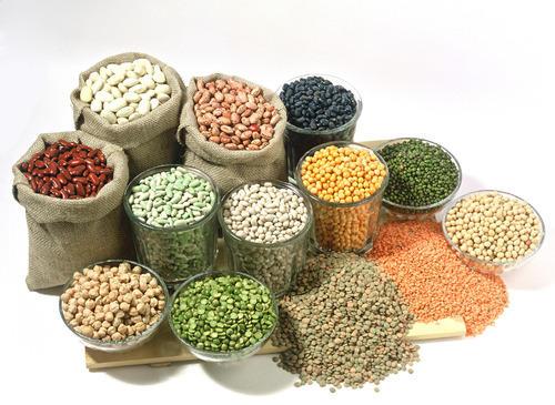 food-grains-500x500